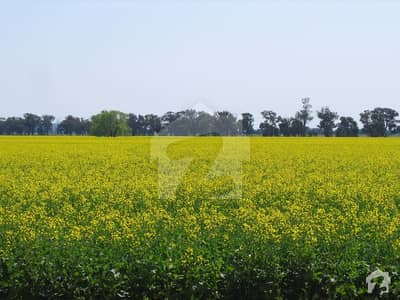 Commercial Plot For Sale In DHA Lahore Phase 8 Broadway  Blcok D