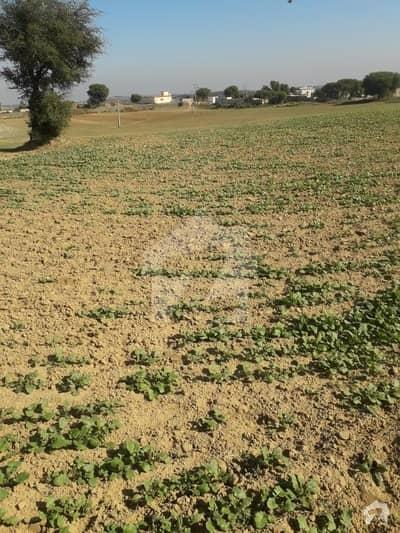 چکری روڈ راولپنڈی میں 670 کنال زرعی زمین 10.72 کروڑ میں برائے فروخت۔