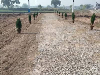 Residential Plot Available For Sale On Good Location