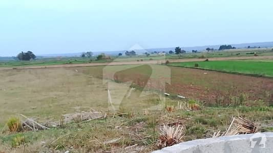 Main Adiala Road Agriculture Land For Sale