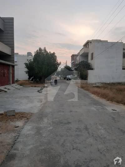 2 Plots For Sale In Sector T 240 Sq Yd