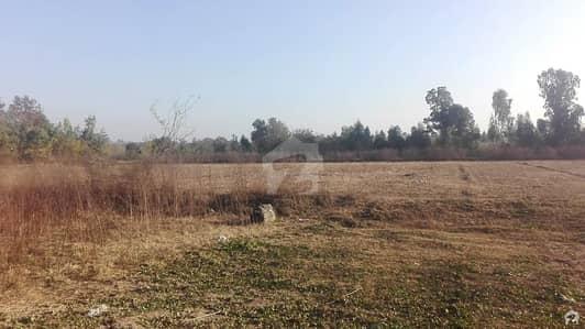 چک بیلی خان راولپنڈی میں 200 کنال زرعی زمین 10 کروڑ میں برائے فروخت۔