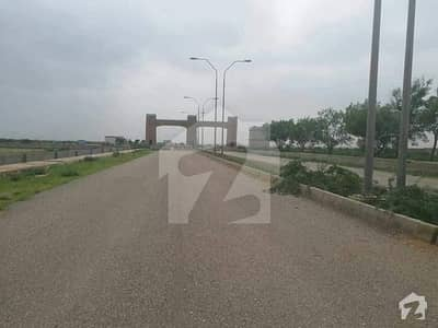 Sector 19 100 Yards Residential Plot For Sale