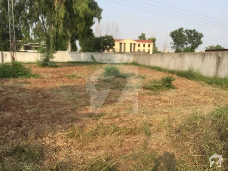 Farm House Is Available For Sale In Chak Shahzad