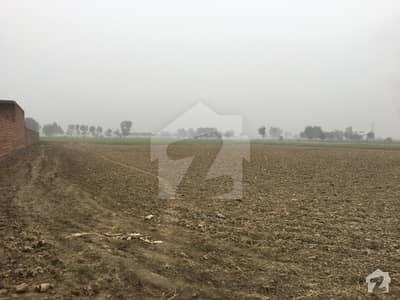 فیروزپور روڈ لاہور میں 26 کنال زرعی زمین 3.25 کروڑ میں برائے فروخت۔