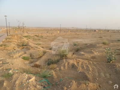 Ready For Construction  Plot Is Available For Sale In Precinct 12  Ali Block