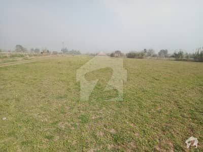 41 kanal Agricultural Land For Sale