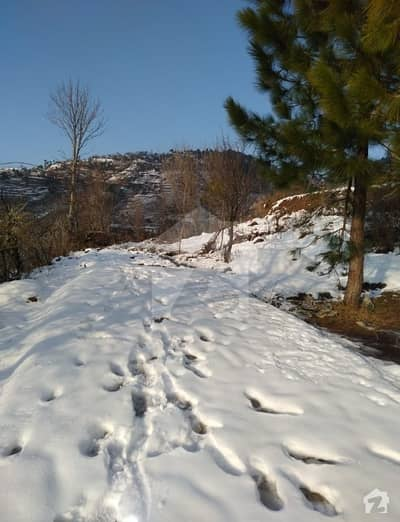 10 Marla Plot For Sale In Bansra Gali Murree