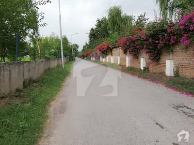 Beautiful 20 Kanal Plot For Sale In Chak Shahzad