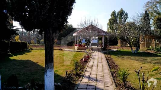 Farm House Is Available For Sale