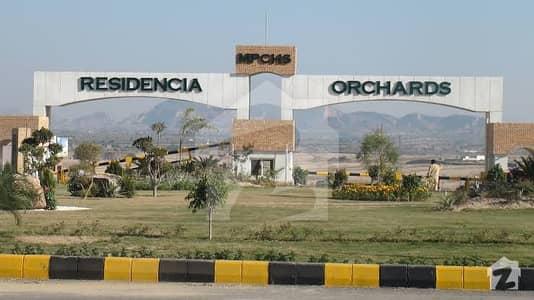 ملٹی ریزیڈنشیا اینڈ آرچرڈز - بلاک سی ملٹی ریزیڈنشیا اینڈ آرچرڈز اسلام آباد میں 10 کنال فارم ہاؤس 3.7 کروڑ میں برائے فروخت۔