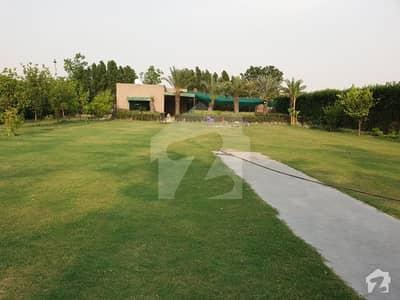 برکی روڈ کینٹ لاہور میں 1 کمرے کا 3 کنال فارم ہاؤس 15 ہزار میں کرایہ پر دستیاب ہے۔