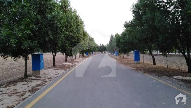 Super Hot Investment 8 Marla Developed Plot For Sale In Low Cost Block J