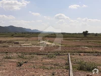 تھالیاں اسلام آباد میں 10 کنال زرعی زمین 1 کروڑ میں برائے فروخت۔