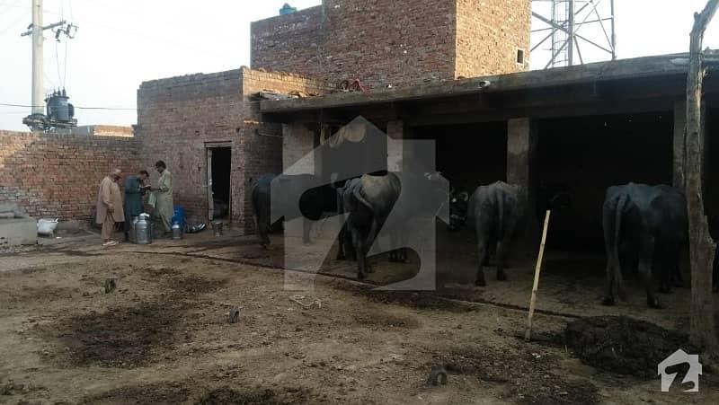 غلام محمد آباد فیصل آباد میں 10 مرلہ فارم ہاؤس 37.5 لاکھ میں برائے فروخت۔