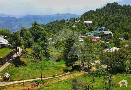 کلب روڈ اسلام آباد میں 20 کنال کمرشل پلاٹ 2 ارب میں برائے فروخت۔