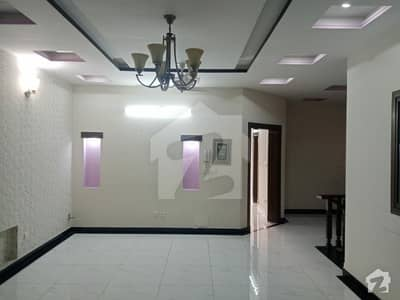 Brand New Ground Portion Is Available For Rent