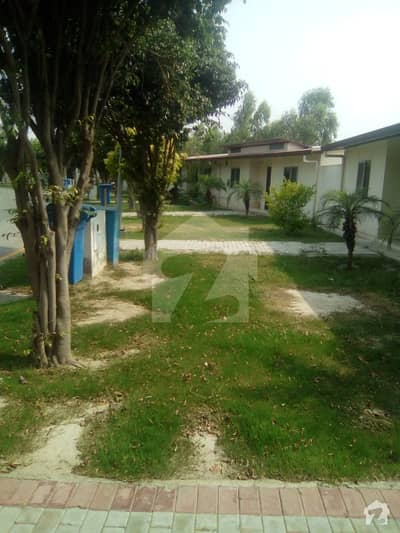 5 Marla Single Storey House For Rent Facing Park