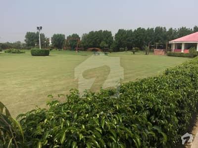 برکی روڈ کینٹ لاہور میں 1 کمرے کا 1 کنال فارم ہاؤس 45 لاکھ میں برائے فروخت۔