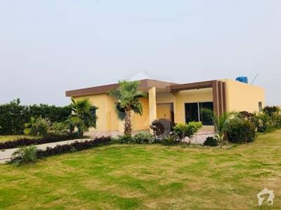 Golden Opportunity Barki Road 4 Kanal Beautiful Farm House Ideal Location