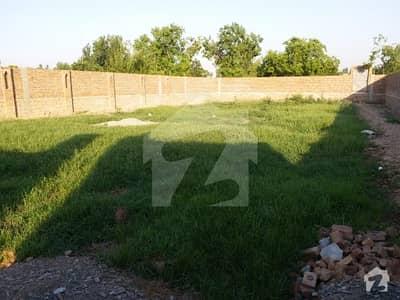 ورسک روڈ پشاور میں 1.5 کنال فارم ہاؤس 25 ہزار میں کرایہ پر دستیاب ہے۔