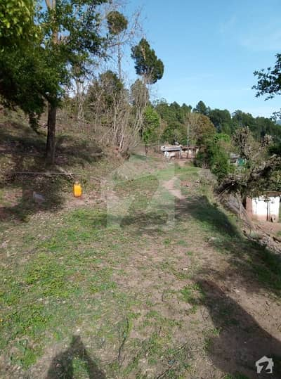 100 Kanal Land Is Available For Sale In Murree