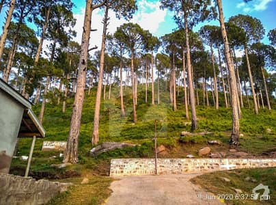 8 Marla Plot For Sale On Expressway Murree