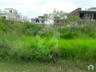 Residential Plot For Sale In I-14 Markaz