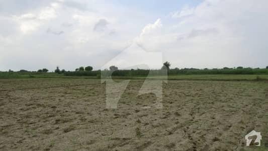 بیدیاں روڈ لاہور میں 8 کنال رہائشی پلاٹ 2.4 کروڑ میں برائے فروخت۔