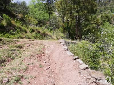 5 Marla Plot For Sale In Pine Mountain Resorts