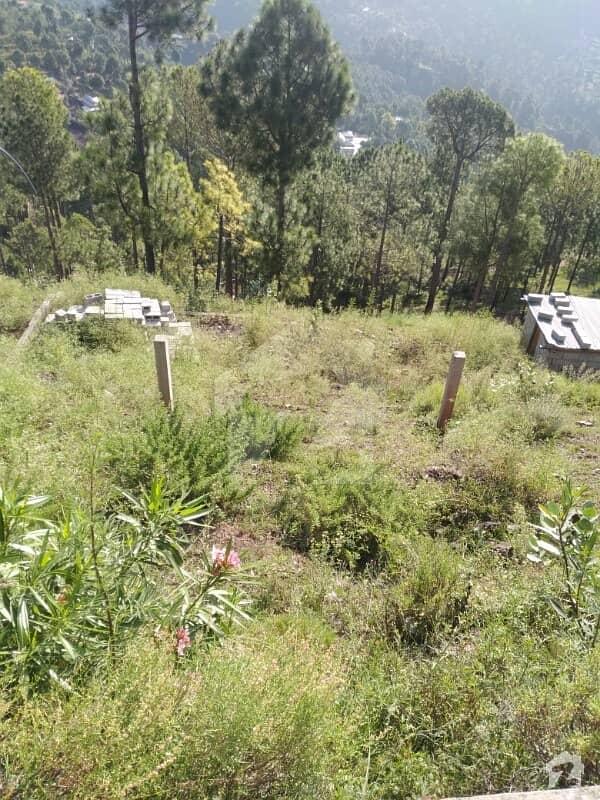 Lakot Murree Property Plot For Sale