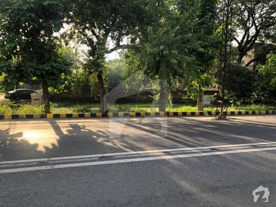 3.5 Kanal Plot For Sale In Link Shami Road