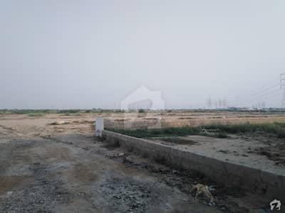 آمنہ کوآپریٹو ہاؤسنگ سوسائٹی سکیم 33 کراچی میں 5 مرلہ رہائشی پلاٹ 15 لاکھ میں برائے فروخت۔