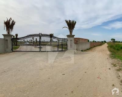Agriculture Land For Sale On Bedian Road