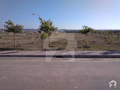 Ideal Plot 1300 On Hot Location Near To Oval With Carpeted Road