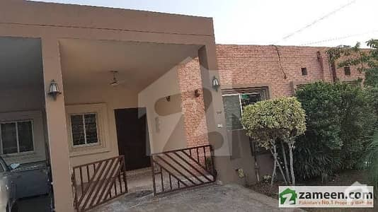 5 Marla Clean Single Storey Saffari Villas Independent House For Rent In Bahria Town Lahore