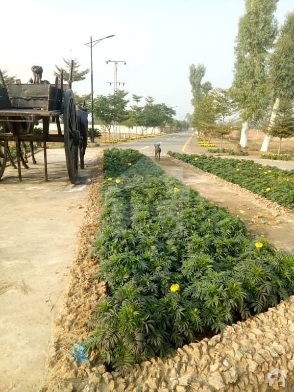 Farm Farms Offers Farm House For Sale On Barki Road 3 Km From Dha At Installments