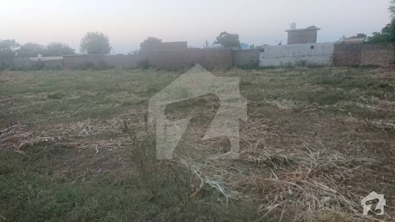 72000  Square Feet Agricultural Land For Sale In Mandra